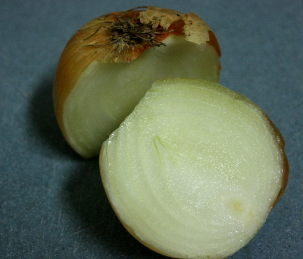 Onion for Pumpkin Lasagna